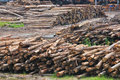 Timber Sawmill Series 1 Stock Photos
