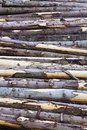 Timber Stack Royalty Free Stock Images