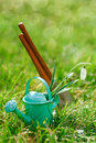 Time for garden now†decorative small gardening tools and snowdrops on grass Stock Images