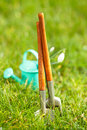 Time for garden now†decorative small gardening tools and snowdrops on grass Royalty Free Stock Photos