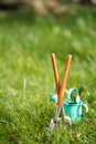 Time for garden now†decorative small gardening tools and snowdrops on grass Royalty Free Stock Photography