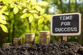 Time for success - Financial opportunity concept. Golden coins in soil Chalkboard on blurred natural background. Royalty Free Stock Photo