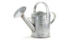 Tin watering can Stock Image