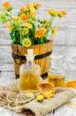 Tincture of calendula Royalty Free Stock Photo