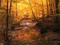 Tinkers Creek, Tinkers Creek Park, Ohio Royalty Free Stock Photo