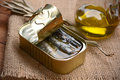 Tinned anchovies in oil on the wooden table Stock Photography