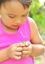Tiny frog on hands of a little girl in summer Royalty Free Stock Photo