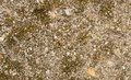 Tiny gravel texture grunge on gray concrete Stock Image