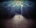 Tiny man entering a mze