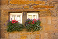 Tiny Scottish windows with flowers Stock Photos