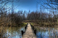 Tiny wooden bridge small towards a forest Royalty Free Stock Image
