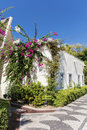 Tipical turkish street with white house and bougainvillea flower lower houses beautiful flowers Stock Image