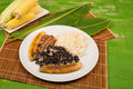 Tipical venezuelan cuisine pabellon criollo homemade Royalty Free Stock Images