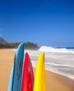 Tips surf board surfboards lumahai beach kauai hawaii sandy shore ocean Royalty Free Stock Photo