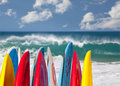 Tips of surf board or surfboards at lumahai beach in kauai hawaii on sandy shore by ocean Stock Images
