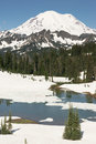Tipsoo Lake Naches Peak Loop Mt Rainier Cascade Mountain Range Royalty Free Stock Photo