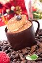 Tiramisu cake in chocolate cup Royalty Free Stock Photo