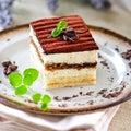 Tiramisu cake Royalty Free Stock Photo