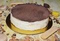 Tiramisu cakes with chocolate fudge and ladies finger cookie Royalty Free Stock Photo