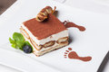 Tiramisu classic italian dessert with a sprig of mint Stock Images