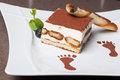 Tiramisu classic italian dessert with a sprig of mint Stock Image