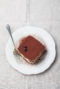 Tiramisu, traditional Italian dessert on a white plate Top view Copy space Royalty Free Stock Photo
