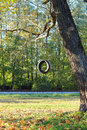 Tire swing hanging from the tree besides the railway. Royalty Free Stock Photo