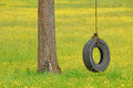 Tire swing in yellow hanging from a white oak tree a field of wildflowers and grass Royalty Free Stock Image