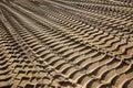 Tire tracks on a beach Royalty Free Stock Photo