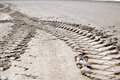 Tire tracks in the dry mud Royalty Free Stock Images