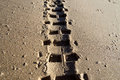 Tire tracks in the sand Royalty Free Stock Photo