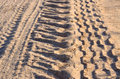 Tire tracks on a sandy road illuminated by the setting sun Stock Photography