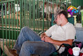 Tired at fair week a young man takes a rest during h in valparaiso in kids and teens with animals must maintain their animals all Stock Photos
