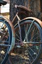 Tired Old Bikes Leaned Up Against a Tree Royalty Free Stock Photo