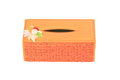 Tissue box a isolated of tissues thai style Royalty Free Stock Images