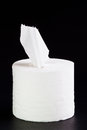 Tissue paper roll. Stock Image