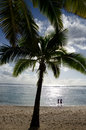 Titikaveka beach in rarotonga cook islands silhouette of a couple comes out of the water under a coconut palm trees at during Royalty Free Stock Photo