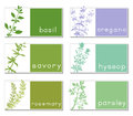 Titled stickers with herbs set of six banners aromatic plants each sticker is for web or packaging design space for text vector Stock Images