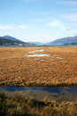 Tivat saline montenegro one of the natural reserve of Stock Photo