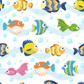Seamless pattern with fish - vector illustration