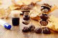 To tinker handmade figures of chestnuts and glue Royalty Free Stock Photo