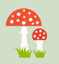 Toadstools two growing in grass vector illustration Stock Image