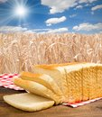 Toast photo of bread on wooden desk with wheat field and blue sky Royalty Free Stock Image