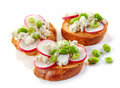 Toasted bread with radish and cottage cheese Royalty Free Stock Photo