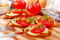 Toasted crostini with mozzarella and tomato Royalty Free Stock Photos