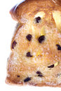 Toasted Raisin Bread Slice Isolated Royalty Free Stock Photography