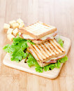 Toasted sandwiches on salad leaf Stock Photography