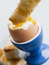 Toasted Soldier being Dipped into Boiled Egg Yolk Royalty Free Stock Images