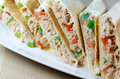 Toasted Tuna Wraps Royalty Free Stock Images