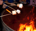 Toasting Marshmallows Royalty Free Stock Photo